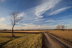 Ein Hauch von Frühling (Frank Reitinger) Tags: winter bayern deutschland wolken landschaften germering