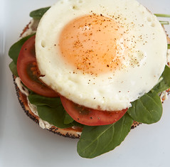 Egg Sandwich 5of7