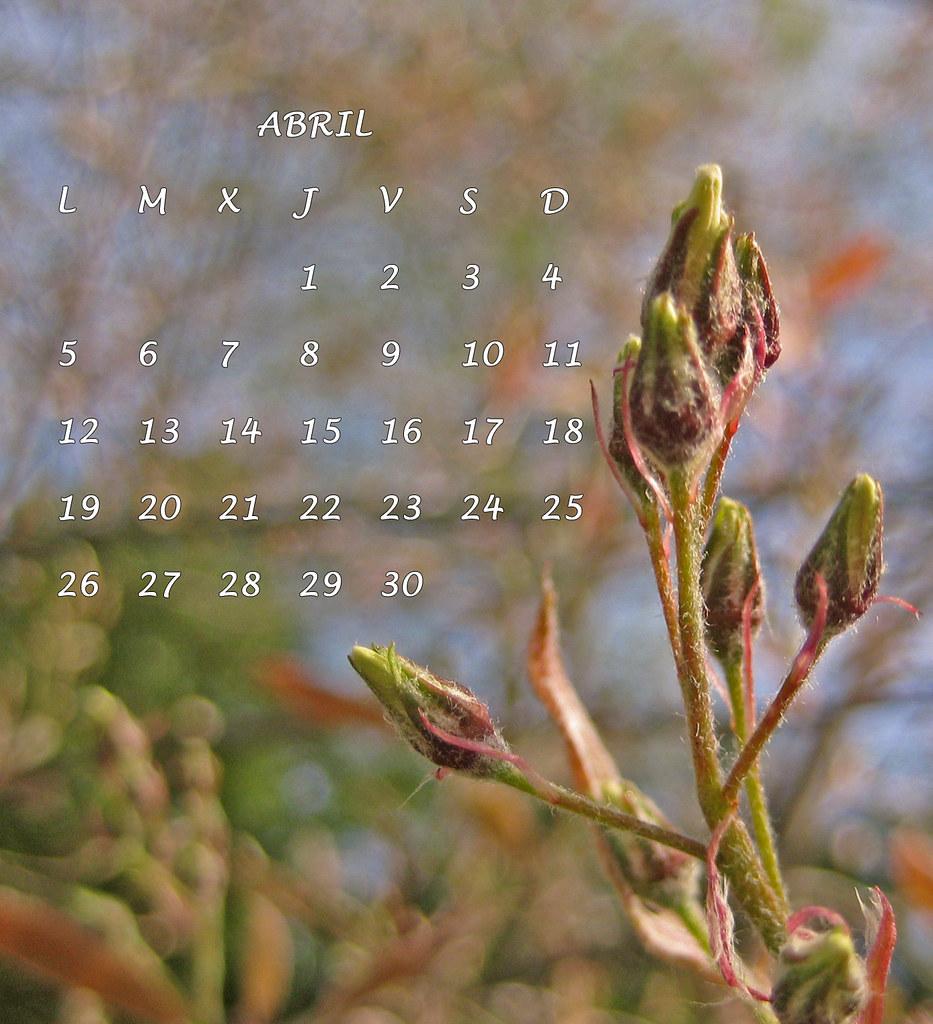 abril 9