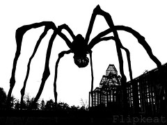 Itsy Bitsy Spider - Maman (flipkeat) Tags: blackandwhite bw sculpture ontario canada silhouette bronze spider gallery different unique sony arachnid awesome ottawa landmark canadian spooky louise national unusual bourgeois maman nationalgalleryofcanada dschx1