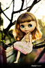 Anamel (Tea-4 Two) Tags: sunset tree 50mm nikon doll blythe boneca nikor d5000 ashletina
