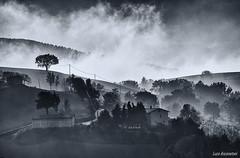 Italian country (Luca-Anconetani) Tags: monochrome italy country fog lucaanconetani colline italia marche campagna nebbia natura nikon atmosfera bn bw biancoenero paesaggimarchigiani collinemaceratesi