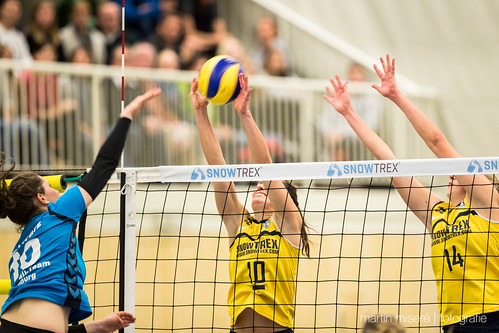 "3. Heimspiel vs. Volleyball-Team Hamburg • <a style=""font-size:0.8em;"" href=""http://www.flickr.com/photos/88608964@N07/32436889080/"" target=""_blank"">View on Flickr</a>"