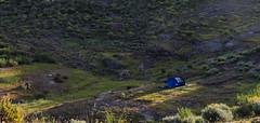 Acampada (Nerea Lorenzo.) Tags: acampada camping naturaleza nature mountain valle caseta tranquilidad paz vida relajación