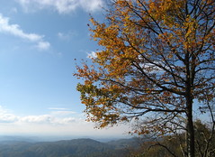 Blue skies over the mountains (Aho, North Carolina, United States) Photo