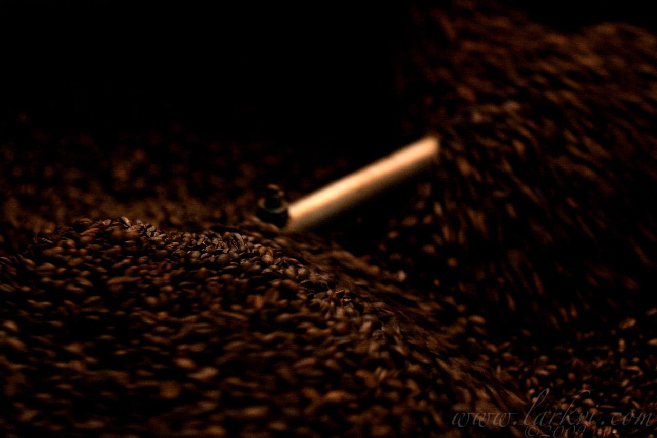 Nure Coffee Roastery #5, Harar, Ethiopia, 2009
