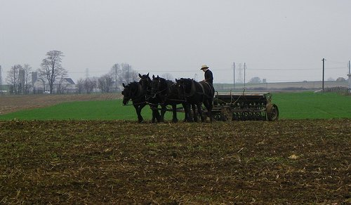 traditional Lancaster Co. farming (by: J. Stephen Conn, creative commons license)