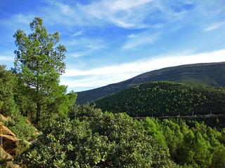 Hammam Essalhine Aquae Flaviane Mont