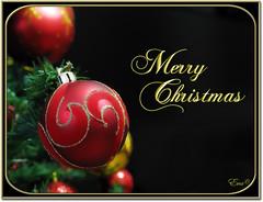 My Christmas card for you all  (in eva vae) Tags: eva feliznatal merrychristmas feliznavidad buonnatale froheweihnachten joyeuxnol hyvjoulua    mutlunoeller  inevavae