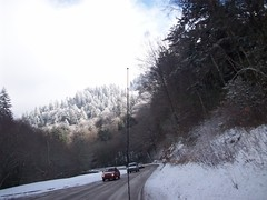 201_1558 (yellerhammer) Tags: winter snow mountains cold great smokey smokies