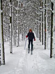 Stephen along Kolapore Trail (Bobcatnorth) Tags: ontario skiing crosscountryskiing kolapore greycounty kolaporeuplands wildernessskiing