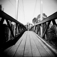 Footbridge (Kerrie McSnap) Tags: blackandwhite bw 120 film mediumformat square holga lomo lomography footbridge toycamera melbourne preston ilfordxp2 suspensionbridge merricreek merricreektrail