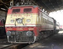 BEASTLY RAJDHANI LIVERY BHUSAWAL WAP4# 22204 (arzankotval2002) Tags: locomotives indianrailways themachines irfca metallicobjects trainsspotting locomotivesoftheworld