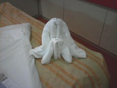 Walruses? (cborresen) Tags: cruise animals towels stateroom