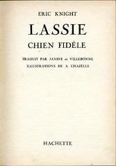 Lassie chien fidle, by KNIGHT (consus-france) Tags: chien knight lassie fidle