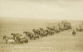 Combine Harvester, circa 1910 - Moscow, Idaho