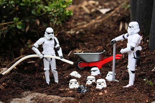 Organic Troopers Crops