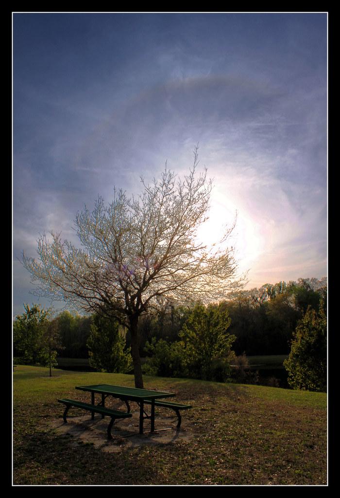 IMAGE: http://farm3.static.flickr.com/2790/4460569767_1b18d10777_b.jpg