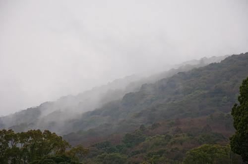 Hills at Uji-tachi