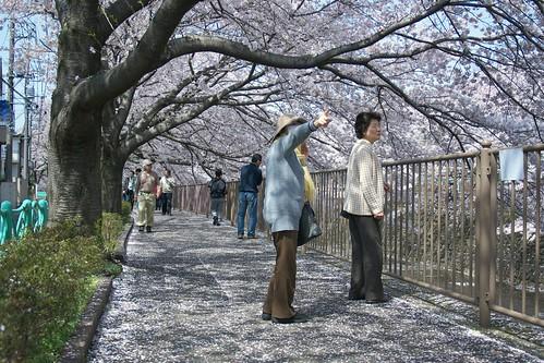 町田樹 画像50