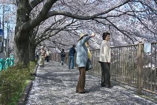 町田樹 画像66