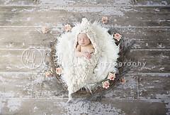 girled up (Heidi Hope) Tags: ri sleeping portrait baby ma massachusetts newengland newborn babyphotography warwickri babyphotographer newbornportrait newbornphotographer newbornphotography rhodeislandphotographer heidihopephotography heidihope httpwwwheidihopecom httpwwwheidihopeblogspotcom