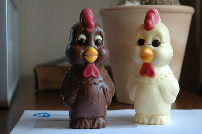 chocolate chickens