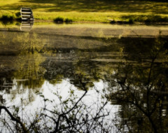 Pond Blur (Mark Tenney) Tags: blur color reflections boat pond nikond50 pollen