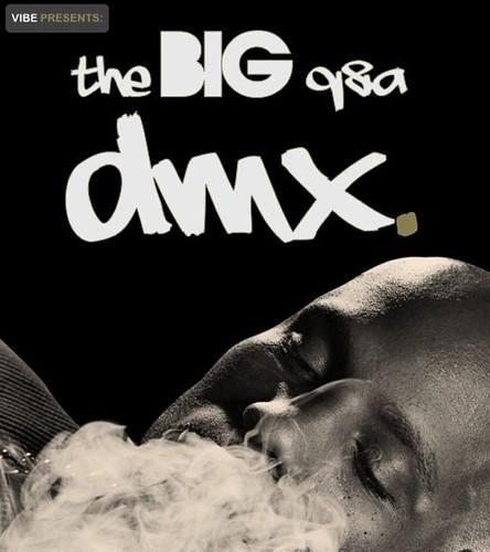 dmx2-vibe