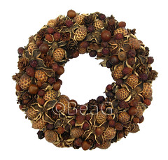 Wreath (Krans) (Made by BeaG) Tags: brown circle design natural handmade unique wreath browns round recycle krans homedecor bruin reuse cirkel walldecor reclaim rond repurpose natureart couronne tabledecor beag doordecor natuurlijk naturalmaterials inspiredbynature uniquedesign homedecorations christmasdesign recycledecor naturalwreath creativechristmas natuurlijkematerialen naturalwreaths designedandmadebybeag uniekontwerp ontworpenengemaaktdoorbeag craftingwithnaturalmaterials knutselenmetnatuurlijkematerialen genspireerddoordenatuur creativechristmasdecoration recyclehomedecor designerwreath designerwreaths