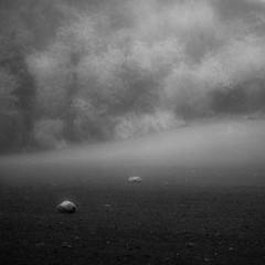 Fine Art (Lumase) Tags: morning autumn trees two bw mist topf25 field square haze stones fineart fading soe allevi