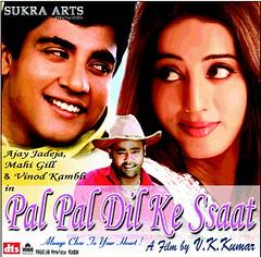 Pal Pal Dil Ke Sath poster