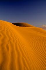 Dunes HDR (paraphrnia) Tags: superaplus aplusphoto