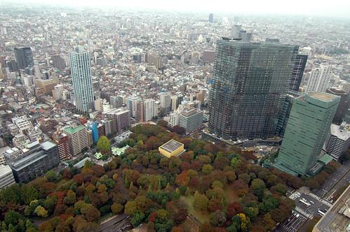 View from Tokyo Metropolitan Building