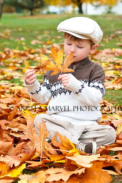 leaf inspector