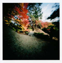 autumn shot by pinhole (naoK) Tags: trip autumn 6x6 film japan square iso100 kyoto 11 pinhole autumnleaves explore realaace canoscan lightroom lide600f shodensanso top20fav2009