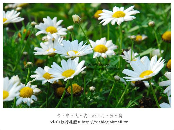 薰衣草森林-心之芳庭約會區33