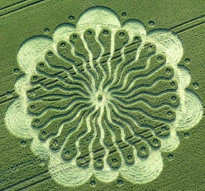 Crop Circle Waden Hill (2), near Avebury, Wiltshire_ Reported 1st July 2009