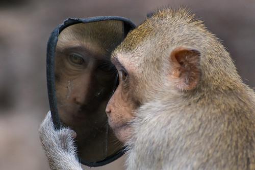 130  Mirror , mirror.....--Ayuthaya , Thailand