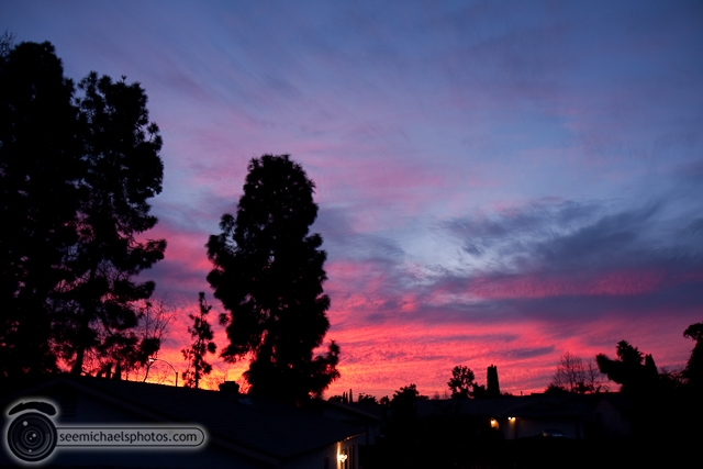 Backyard Sunset 10910 © Michael Klayman-001