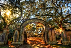 Wormsloe, the Endless Forest of Savannah - 16,000 pixels wide! (Stuck in Customs) Tags: road old travel trees usa color digital america forest georgia photography hope blog site high oak nikon gate arch dynamic stuck natural forrest path south united north january surreal historic plantation land gump imaging savannah states southeast antebellum range isle hdr trey wormsloe travelblog customs 2010 endless forestgump ratcliff stuckincustoms d3x treyratcliff