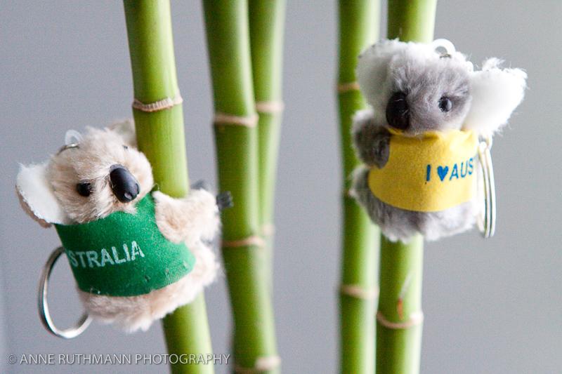 Toy Koala Keychains