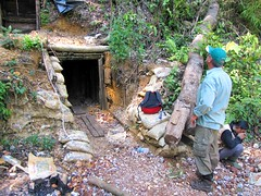 Aneuk Perak (Mangiwau) Tags: underground gold traditional structure mining corporation minerals illegal vein aceh camps quartz prospect emas anak miners mutiara perak peti iriana tambang tradisional masyarakat pitting barrick penambangan atjeh aneuk izin tanpa geumpang epithermal woyla pertambangan prospek jukardi