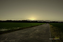 Sunrise at Dimasalang (mannyfrancisco) Tags: tree sunrise tricycle philippines talavera ricefields pinoy nuevaecija handtractor ricegranary philippinecarabao earlymorningshoot canon450d dimasalang earthasia dimasalangsur dimasalangnorte irrigationcontrolsystem morninginnuevaecija