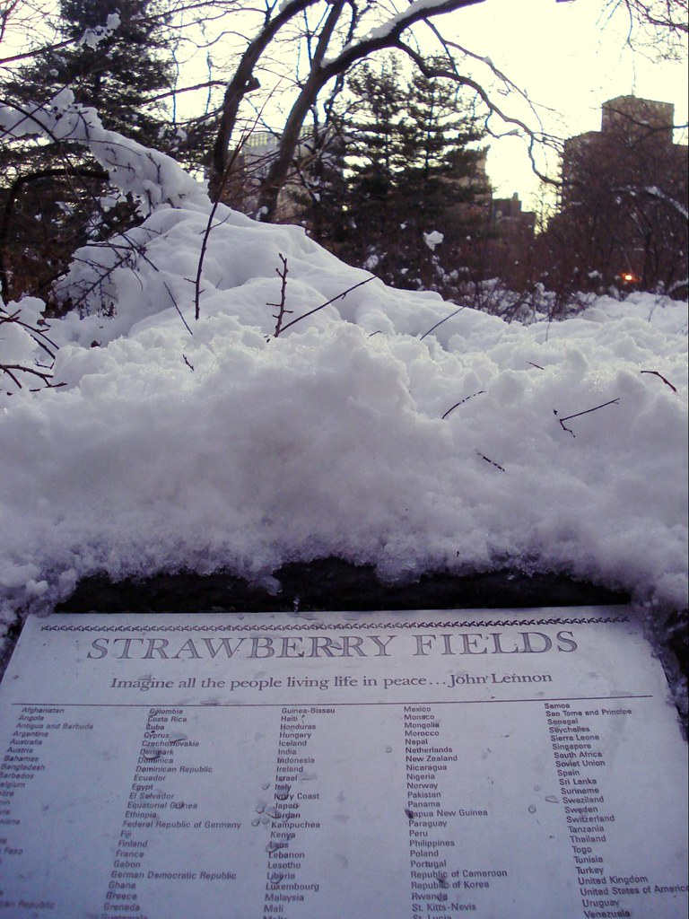 7-48-10february2010 163 strawberry_fields