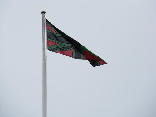 Chris Ofili flag 4845