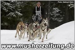 WSA-WM 2010: Angelika-Merkel-GER, Platz 2 8-Hunde-Klasse
