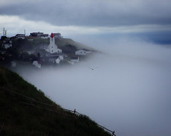 Out Of The Fog (Clyde Barrett) Tags: mist church fog newfoundland seagull nl nfld bishopscove clydebarrett