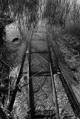 In viaggio verso Atlantide (Oriana Milani (poco tempo)) Tags: bw white black water blackwhite nikon railway bn acqua bianco nero ferrovia d80 1116mm nikonflickraward neroamet