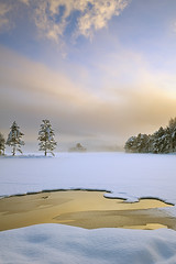 After the Light, Gold - Loch An Eilean, Cairngorm, Scotland (cedric_g) Tags: trees winter cloud mist snow reflection fog landscape gold scotland nikon loch hitech cairngorm tistheseason lochaneilean nikond3
